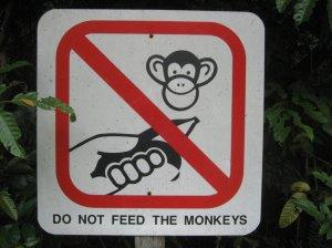Don't Feed the Monkeys