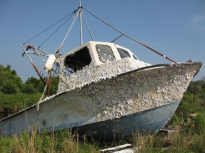 Boat with Barnacles