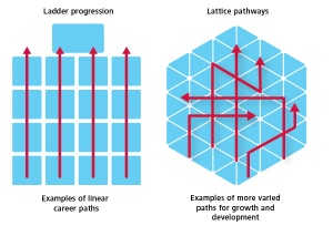 Corporate Ladder vs Lattice